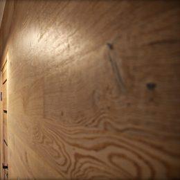 medienos rastas