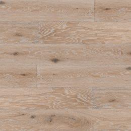 sukuota sendinta sienu danga medine azuoline balinta