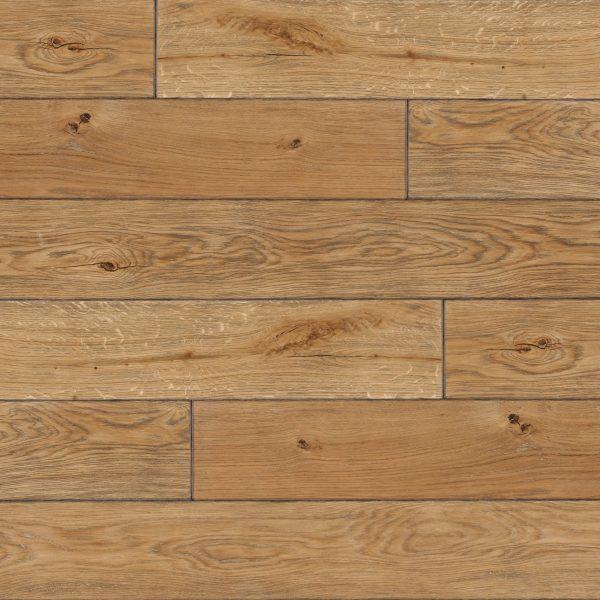sendinta sienu danga medine azuoline