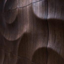 Amazonas sienu dengimas