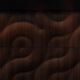Buran isskirtine sienu danga