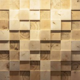 sa10-sienu-danga-perdirbta-mediena
