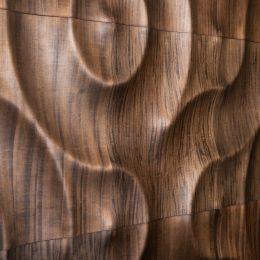 amazonas apdaila sienoms