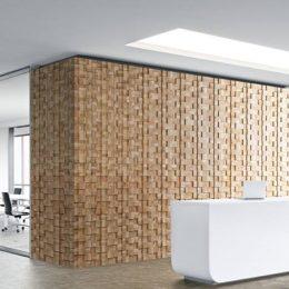 dekoratyvinė sienų plokštė