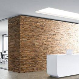 dekoratyvines sienu plokstes 1