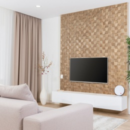 Modern living room with tv equipment and sofa