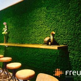 Evergreen St. Agnes mit Waldmoos Freund GmbH 3